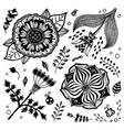 hand drawn flowers set vector image
