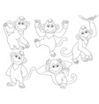 Monkeys Set vector image vector image