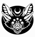 muzzle a bat in gothic style vector image vector image