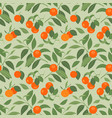 seamless pattern with mandarins on light green vector image vector image