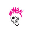 vandal skull vector image