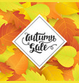 Autumn sale banner template with fall leaves