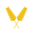 pair of wheat icon flat style vector image vector image