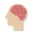 profile head with human brain vector image vector image