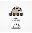 Seal head vector image vector image