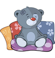 The stuffed toy bear cub and pillows cartoon vector image vector image
