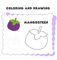 coloring and drawing book element mangosteen vector image