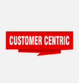 customer centric vector image vector image