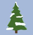 lush coniferous tree spruce pine evergreen vector image