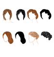 Set hair vector image