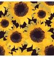 sunflower flower seamless pattern vector image
