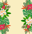 Tropical with tropical plants exotic flowers vector image