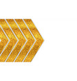 golden luxury background template vector image vector image