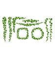 green ivy frames flat set vector image vector image