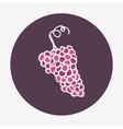Hand-drawn grape ripe icon vector image vector image