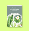 infomation about summer plant and house plants vector image vector image