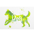 Painted animals dog vector image vector image