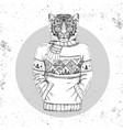 retro hipster animal tiger dressed in pullover vector image