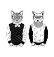 two friendly cat pets in pose of fashion models vector image vector image