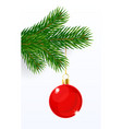 christmas ball on a fir branch vector image