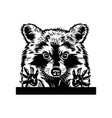 cute raccoon requests cuddle and snuggle vector image vector image