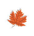 dried brown leaf flat abstract element vector image