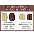 The difference between Arabica and Robusta vector image vector image