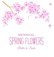 Card of cherry blossom flowers vector image