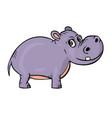 hippopotamus on white background cute cartoon vector image