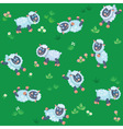 Seamless pattern of summer meadow with sheep vector image