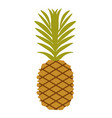 simple pineapple fruit vector image vector image