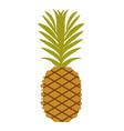 simple pineapple fruit vector image