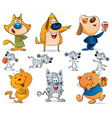 animal pets collection vector image vector image