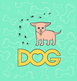 chihuahua dog funny caricature animal vector image