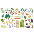 hand drawn fresh delicious vegetables package of vector image vector image