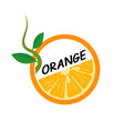 orange fruit icons flat style vector image vector image