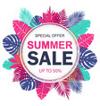summer sale banner design for promotion vector image