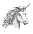unicorn sketch isolated head vector image vector image