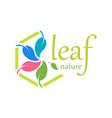 5 leaf logo template design vector image vector image