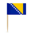flag bosnia and herzegovina vector image vector image