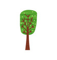 tree forest green color stylized cute style vector image vector image