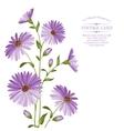 Chrysanthemum flower head vector image vector image