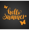 Hello summer hand lettering typography poster vector image