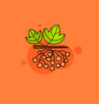 kalina fruit branch sketch with red berry and vector image