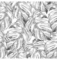 monstera leaves hand drawn seamless pattern vector image