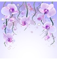 watercolor background with orchids vector image