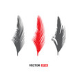 birds feathers icon vector image vector image