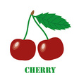 Cherries isolated object vector image vector image