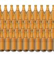 Glass Beer Brown Bottle vector image