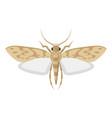 mole pest entomology icon little harmful moth vector image